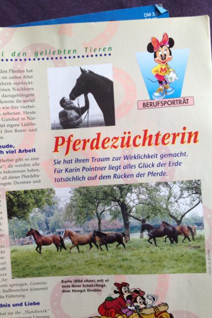 Mein Leben als Pferdemädchen - Eine Verfallsgeschichte